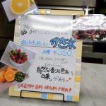 7/21開催「ママ&キッズまるごとマルシェ」でプチ・ラパンのかき氷!?